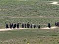 Mantan ISIS Minta Pemerintah Beri Solusi untuk WNI di Suriah