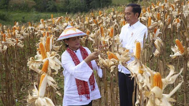 Saat menerima aktivis Perempuan Arus Bawah di istana, Presiden Jokowi berbagi cerita kenangan perjuangan ibunya mendidik anak serta menopang ekonomi keluarga.