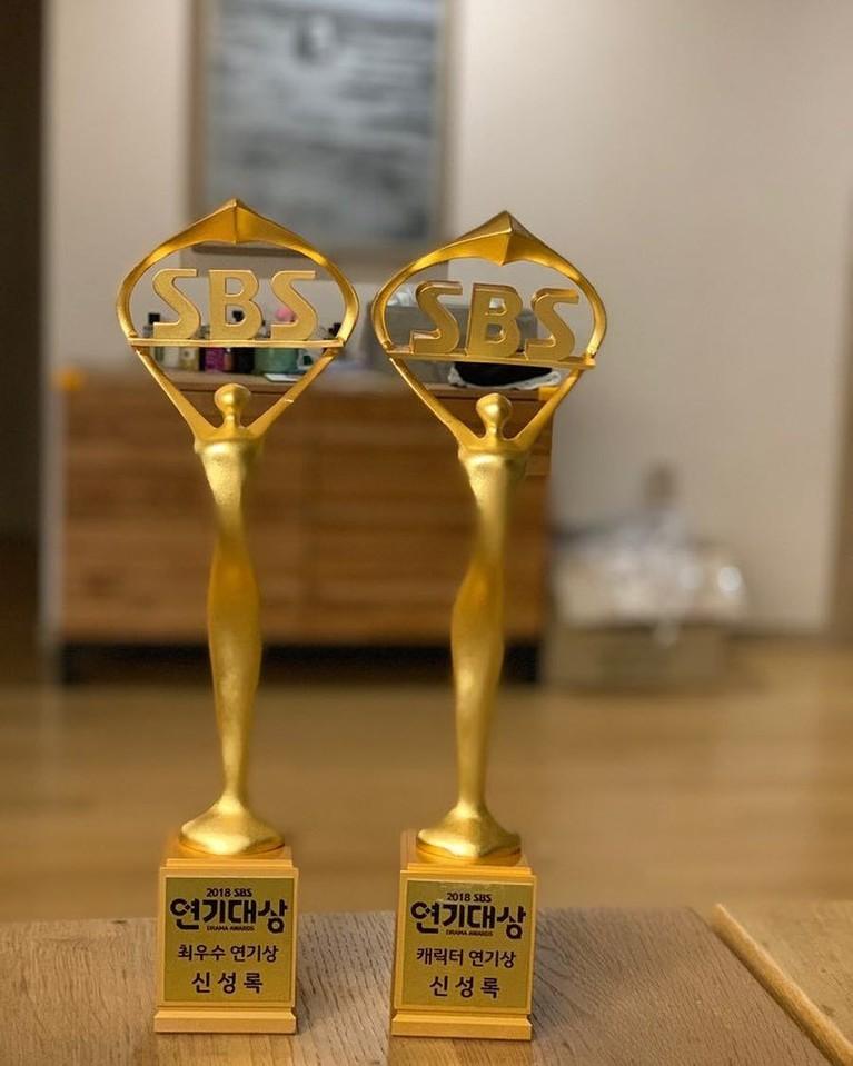 Di acara SBS Drama Awardstahun 2018, Shin Sung Rok juga meraih penghargaan dalam nominasi 'Best Characters' lewat filmReturn.