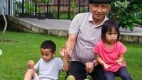 <p>Tak hanya dengan anak Hanum Rais, dengan cucu dari anak lainnya pun cukup dekat. Amien mengajak mereka untuk memanen mangga yang sudah ranum nih. Wah tampaknya lezat banget ya. (Foto: Instagram @hanumrais)</p>