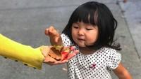 <p>Si bungsu Miko yang berusia dua tahun juga sudah pandai melipat baju. Di foto ini Miko imut banget ya?</p>