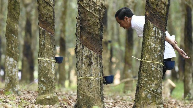 Cita-cita Jokowi untuk redistribusi lahan 9 juta ha kepada para petani masih jauh panggang dari api. Faktanya, reforma agraria belum mensejahterakan petani.