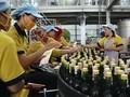 VIDEO: Anggur Orang Tua, Warisan Fermentasi untuk Kesehatan