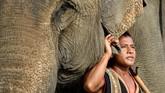 Festival gajah Buon Don adalah atraksi wisata utama di Veitnam, namun banyak aktivis hewan yang mengkritiknya.