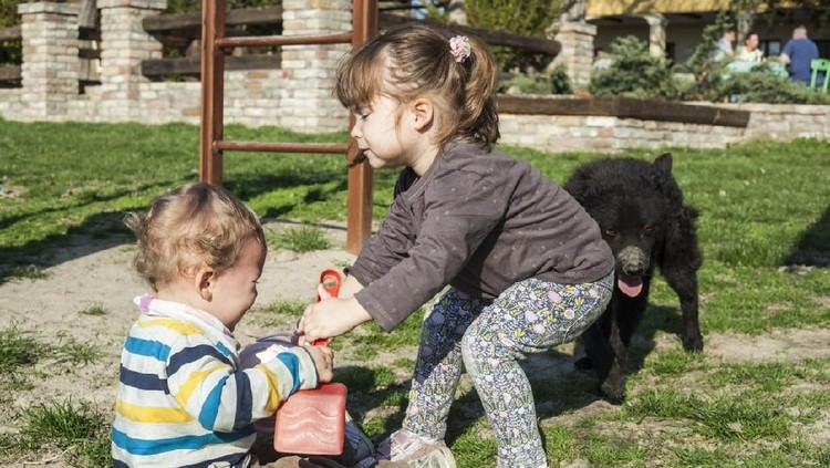 Anak suka bertengkar gara-gara rebutan mainan? Cara ini bisa diterapkan ketika Bunda menghadapinya.