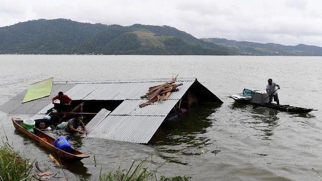 Peneliti LIPI menduga bahwa hiu yang ditemukan warga pascabanjir bandang di Sentani adalah peliharaan warga, sebab ciri fisiknya menandakan bukan hiu air tawar