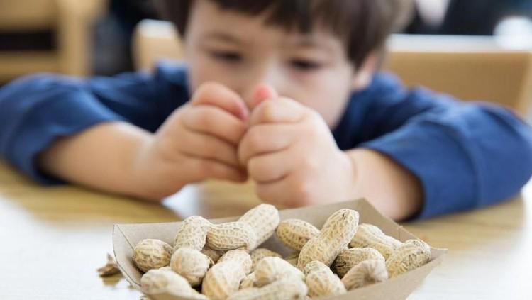 Makan kacang selama hamil membuat bayi mudah alergi di kemudian hari? Simak paparan ahli ini, Bun.