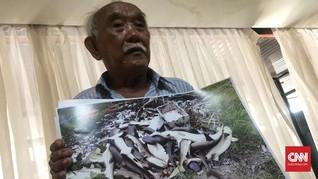 Penangkar Hiu Karimunjawa Tak Terima Ratusan Ikannya Diracun