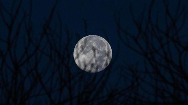 Fenomena full moon akan kembali terlihat pada Jumat (19/4) mendatang, bulan purnama ini dinamakan Pink Moon.