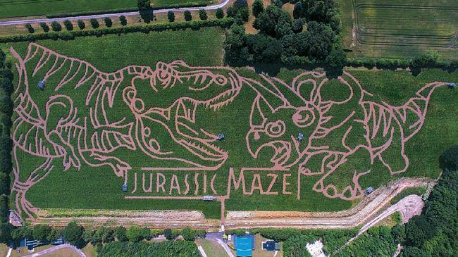 Tak jarang objek wisata membangun labirin untuk menambah unsur keseruan.