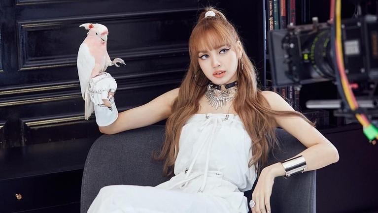 Bukan hanya jago dance, Lisa ternyata menguasai empat bahasa asing, yaitu Inggris, Jepang, Korea, dan Thailand. Hebatnya ia bisa ngerap dengan empat bahasa itu lho.