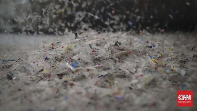 Manusia menelan sekitar 5 gram plastik setiap pekan. Kondisi ini membuat plastik menjadi permasalahan global yang harus diperhatikan.