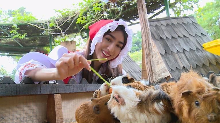 Tak lengkap bila ke Bandung tapi tak berkunjung ke Lembang. Celebrity On Vacationjuga berkunjung ke Farm House Susu Lembang.