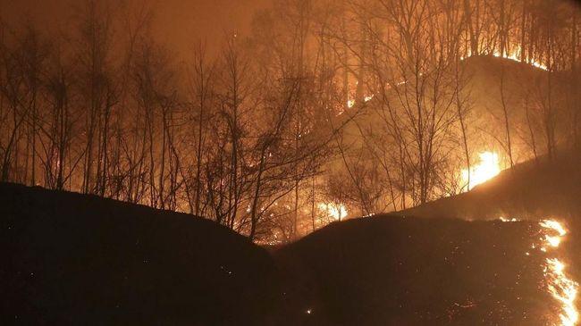 Kebakaran hebat terjadi di Portugal sehingga membuat pemerintah setempat mesti mengerahkan 1000 petugas pemadam kebakaran.