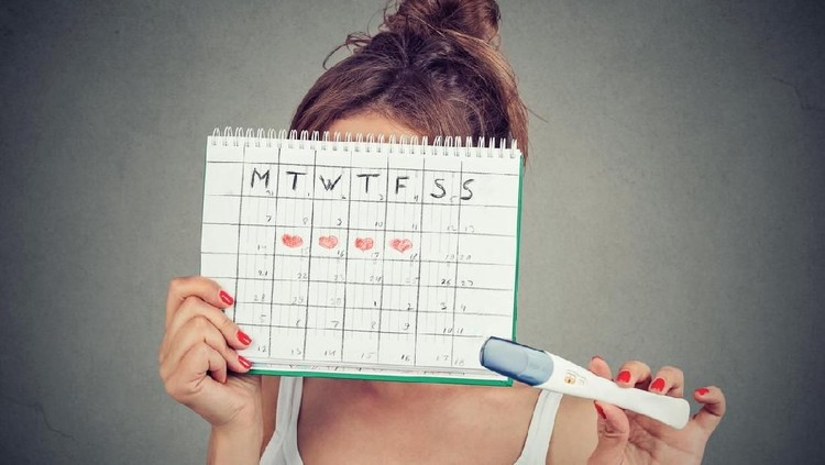 Young woman hiding behind a periods calendar and showing a positive pregnancy test