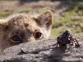 5 Rekomendasi Film Pekan Ini, 'The Lion King'