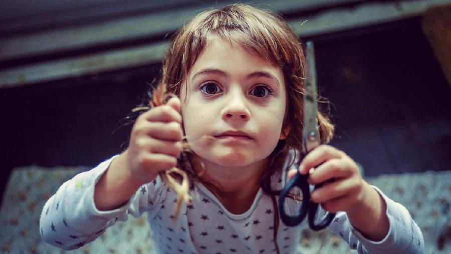 Cerita Viral Bocah 5 Tahun Jadi Tukang Cukur Dadakan Sang Adik