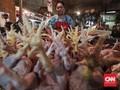Harga Ayam Ras Segar dan Daging Sapi Makin Mahal
