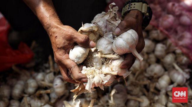 Kementerian Perdagangan mengklaim harga bawang putih turun hingga 50 persen, dari Rp80 ribu per Kg pada awal ramadan kini menjadi Rp40 ribu per Kg.