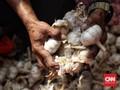 Mendag Bakal Beri Izin Impor Bawang Putih 90 Ribu Ton