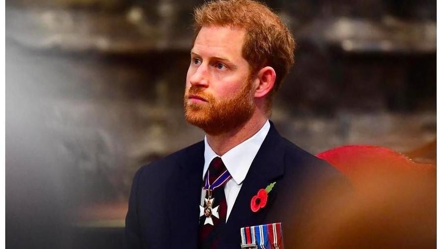 Ucapan Ultah dari Pangeran Harry Sengaja Bikin Jengkel Pangeran William