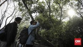 Infrastruktur Ramah Lingkungan Jadi Syarat Ekowisata