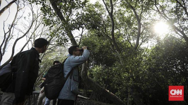 Pemerintah diharapkan melakukan kajian terlebih dahulu sehingga pembangunan infrastruktur tidak mengganggu habitat dan keanekaragaman hayati.