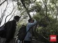 Lore Lindu, Lokasi Favorit Kegiatan Pengamatan Burung di Poso