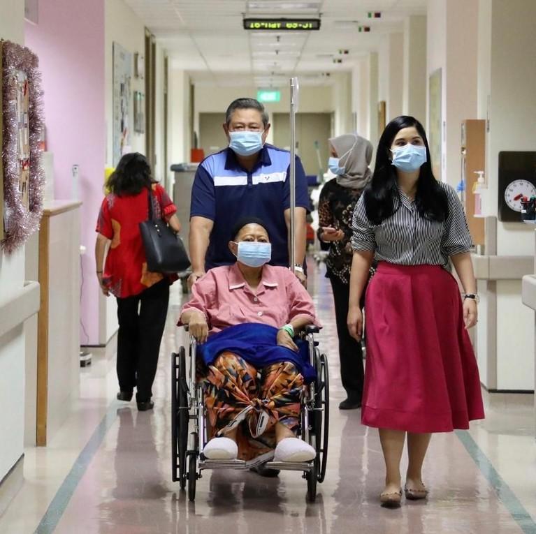 SBY yang mendorong kursi roda Ibu Ani Yudhoyono saat melewati lorong rumah sakit untuk keluar menghirup udara segar. Annisa Pohan, menantu pertama mereka pun setia mendampingi.