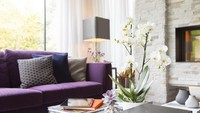 Padupadan sofa ungu dengan bantal besar berwarna-warni menjadi pilihan yang cukup menggoda nih, Bun. Memajang anggrek di tengah meja akan membuat ruangan jadi lebih hidup. (Foto: iStock)