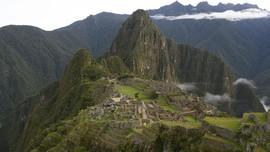 Sepi Turis, Beruang Langka Terlihat di Machu Picchu