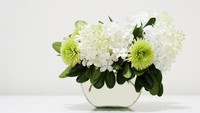 <p>Bunga hortensia atau <em>Hydrangea</em> juga dikenal dengan nama kembang bokor. Sebagian besar spesies bunga ini berasal dari Jepang dan Tiongkok. Bungahortensia termasuk tanaman hias populer karena ukurannya yang besar. (Foto: iStock)</p>