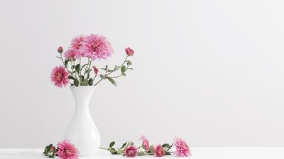 6 Jenis Bunga Cantik Penghias Ruangan Saat Lebaran