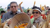 <div>Bersama merayakan Hari Tani Nasional yang jatuh tiap tanggal 24 September. (Foto: Instagram/ @aniyudhoyono)</div><div></div>