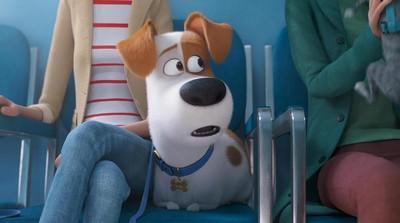 3 Nilai Positif untuk Anak dari Film 'The Secret Life of Pets 2'