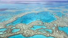 Great Barrier Reef Lolos dari 'Daftar Neraka' UNESCO