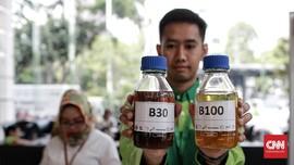Pengusaha Beberkan Produksi Biodiesel Mepet Untuk B30