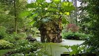 <div>Area kebun yang dinamai The Stumpery, ditumbuhi berbagai tanaman dari hutan. The Stumpery menampilkan serangkaian struktur kebun yang alami. Kemudian ada dua 'kuil' klasik yang dibuat dari kayu ek hijau dan dipotong menyerupai batu, di bagian bawahnya terdapat patung Dewi Kayu David Wynne.</div>