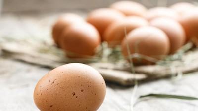 Penjelasan Dokter Mengenai Penyebab Telur Bisa Sebabkan Kebutaan