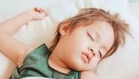 <p>Pules banget Bjorka tidurnya, bikin Mama Sabai enggak tahan ikutan gemas melihatnya. (Foto: Instagram @sabaidieter)</p>