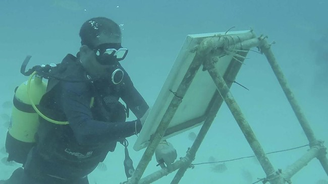 Sandor Gonzalez asal Kuba harus melakukan sejumlah eksperimen sebelum akhirnya terbiasa untuk melukis di dalam air.