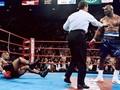 Demi Tyson, Holyfield Latih Tanding Lawan Klitschko