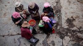 FOTO: Kekesalan Pemburu Jamur Obat Pada Perubahan Iklim