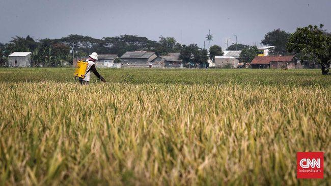 Presiden Jokowi menerbitkan peraturan presiden untuk mengendalikan alih fungsi lahan sawah yang belakangan ini meningkat pesat.