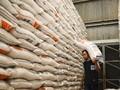 Pemerintah Ingin Ekspor 100 Ribu Ton Beras ke China Pada 2020