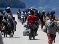 LIPI Rilis Situs Papua, Ulas HAM Hingga Kegagalan Pembangunan