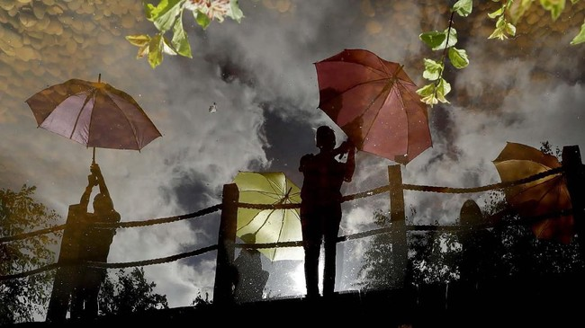 Dalam foto unik pilihan CNNIndonesia.com pekan ini, ada cerita tentang panas yang menyengat Eropa, padi-padi unik di China, dan api di Pan America Games.