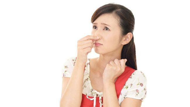 7 Jenis Bau Miss V dan Penyebabnya