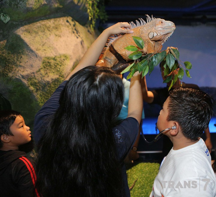 Anak-anak peserta 'Aquacamp Si Otan' seru-seruan mengenal lebih dekat dunia satwa air nih, Bun.