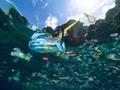 Studi: Limbah Plastik di Atlantik Lebih Banyak dari Dugaan